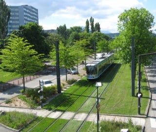 Échirolles et Lorient, deux collectivités françaises lauréates 2020 European Energy Award Gold